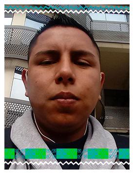 PEDRO SALINAS FLORES